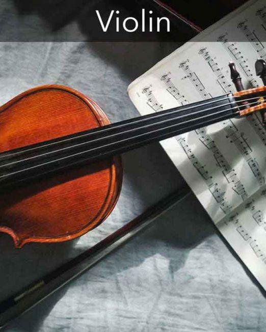 cat-violin